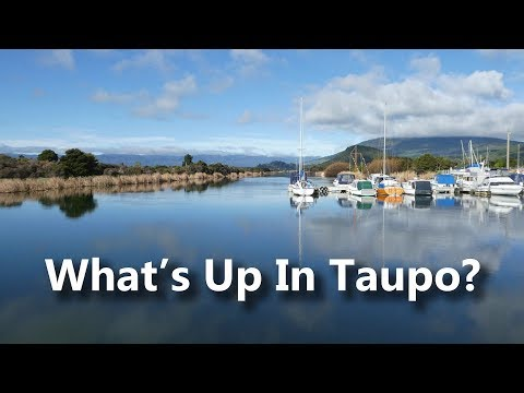 What's Up In Taupo?