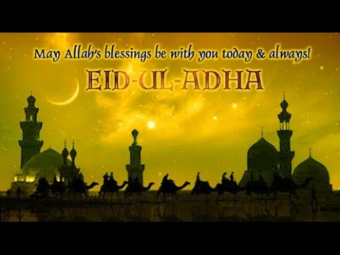Eid Al Adha عيد الاضحى 2017 Islamic English Vocabulary Eid Ul Adha Natok 2017 Youtube