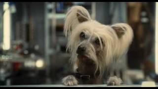 Cats & Dogs 2 Кошки против Собак Месть Китти Галор - Trailer 2010