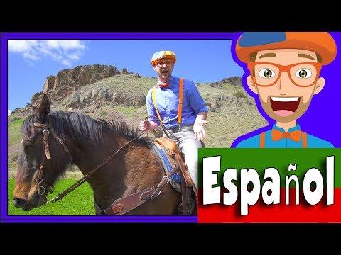 Un día en el Rancho para Niños   Blippi Español Video para Infantiles