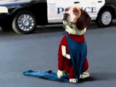 UNDERDOG - Blooper Reel