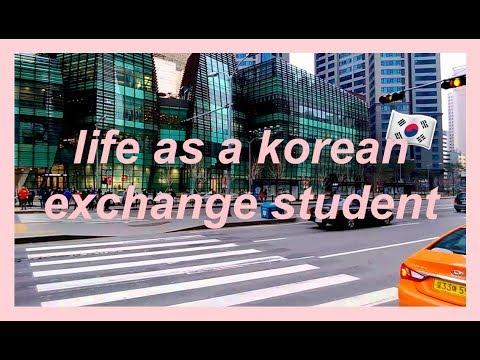 life as a korean exchange student   seoul vlog (cube cafe, noraebang, korean class, etc)