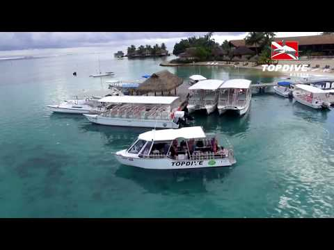 Diving in Moorea with Top Dive, French Polynesia