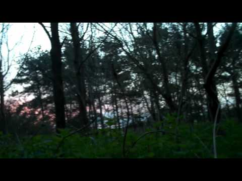 Wild camp at Owl Wood near the river Waveney in Suffolk