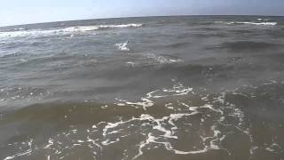 FT009 RC Boat Wave Jumping Hilton Head Take 2
