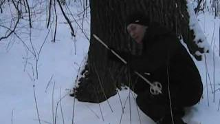 Охота на медведя. Анекдот