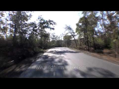 Trip to Jabalpur - Madhya Pradesh