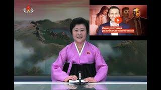 """TV Северной Кореи о """"Рыбке"""", Навальном и Приходько."""