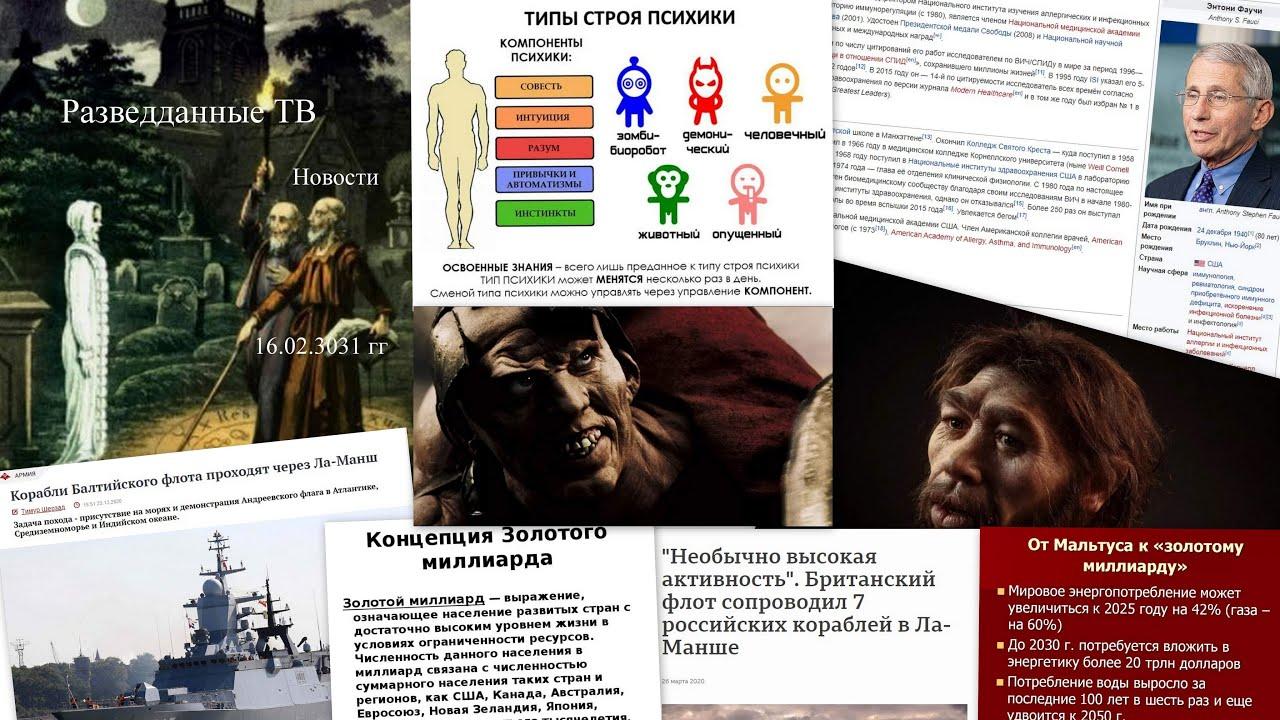 Сергей Будков: Разведданные ТВ, 16.02.21