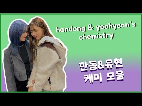 handong and yoohyeon's chemistry 한동&유현 케미 모음 🐱🐶