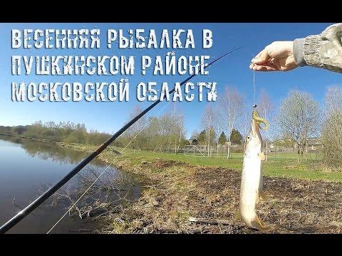 Весенняя рыбалка в Пушкинском районе