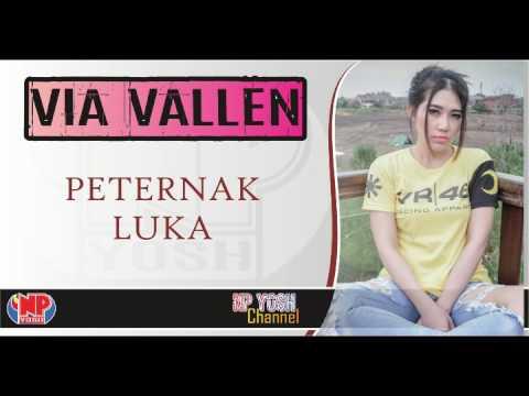 PETERNAK LUKA (SERA Live Taman Ria Maospati) - VIA VALLEN... Terbaru...