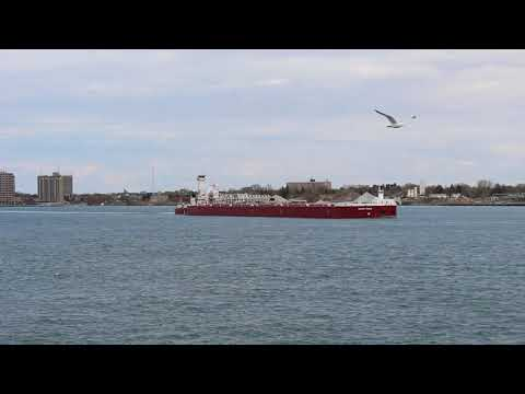 Dirk S. Vanenkevort/ Michigan Trader Sailing Lake Huron in Port Huron, MI (4-11-2021)