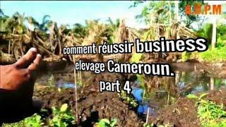 Part4 :comment réussir business elevage Cameroun.