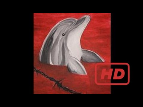 Dolphin Documentary Blood Dolphins, Part 2