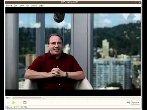 Linus Torvalds interview in Software Wars, the Movie