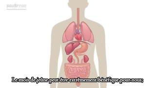 Les effets du jeûne sur le corps ( Animation)