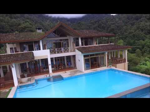 Energy Nature Compound with Waterfalls And Organic Coffee Farm