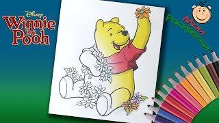 Винни Пух и его друзья Раскраски для детей. Раскраска Винни Пух собирает цветы