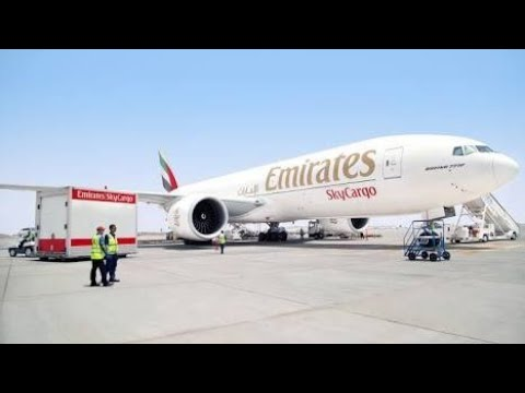 Emirate Airlines Vacancy For Cargo Profile Updates - Live