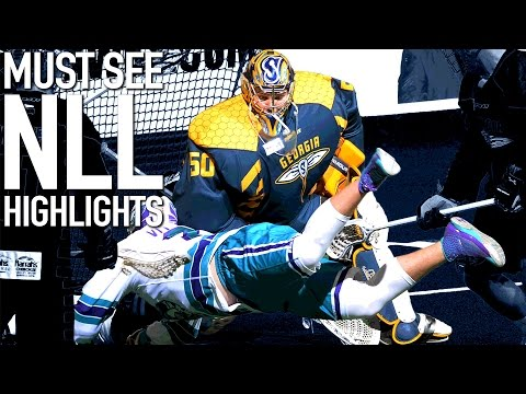 Knighthawks exterminate Swarm at Blue Cross Arena | National Lacrosse League