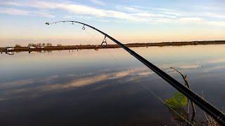 Рыбалка на фидер весна 2020 Река Суда