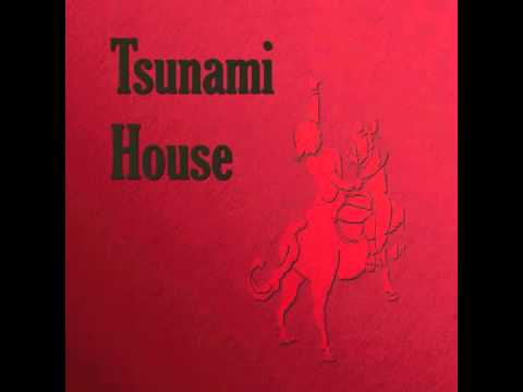 Tsunami house insomnia youtube for Insomnia house music