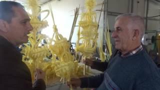 Visita al viviero y fábrica Hermanos García Magallón. Elche, 25 febrero 2017 (2)