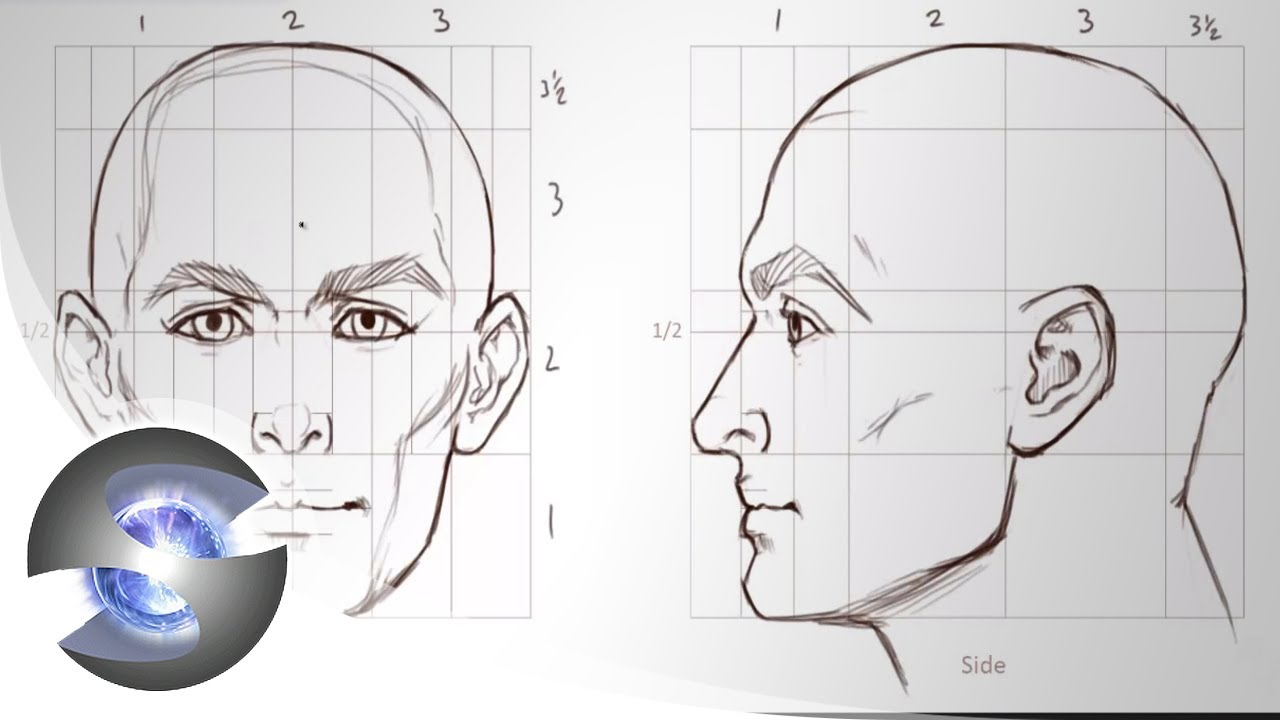 hight resolution of human face diagram