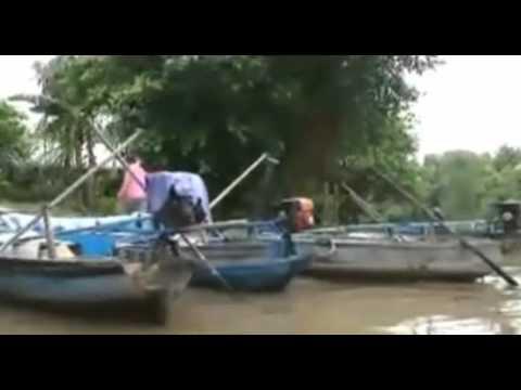 Anh Về Miền Tây - Nguyễn Tâm