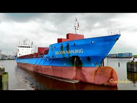 cargo seaship WILSON NANJING 9HA2627 IMO 9431018 lockbound Emden merchant vessel Seeschiff