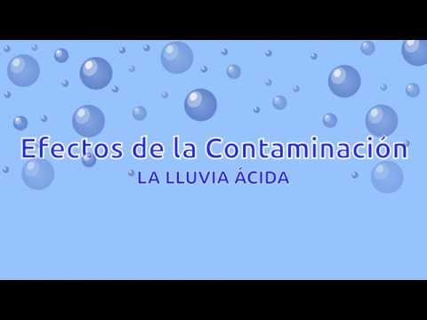 Experimento casero: acción de la lluvia ácida YouTube