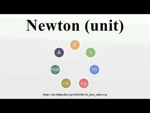 Newton (unit)