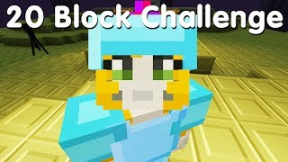 Minecraft PS4 - 20 Block Challenge - The End. (37)