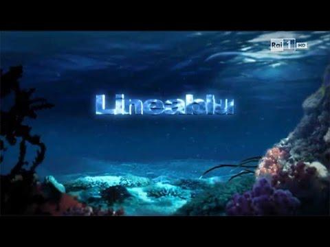 RAI1 - Lineablu del 20 settembre 2014