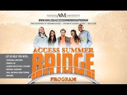 Access Summer Bridge
