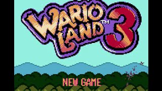 Wario Land 3 (GBC) - 100 Treasures Longplay