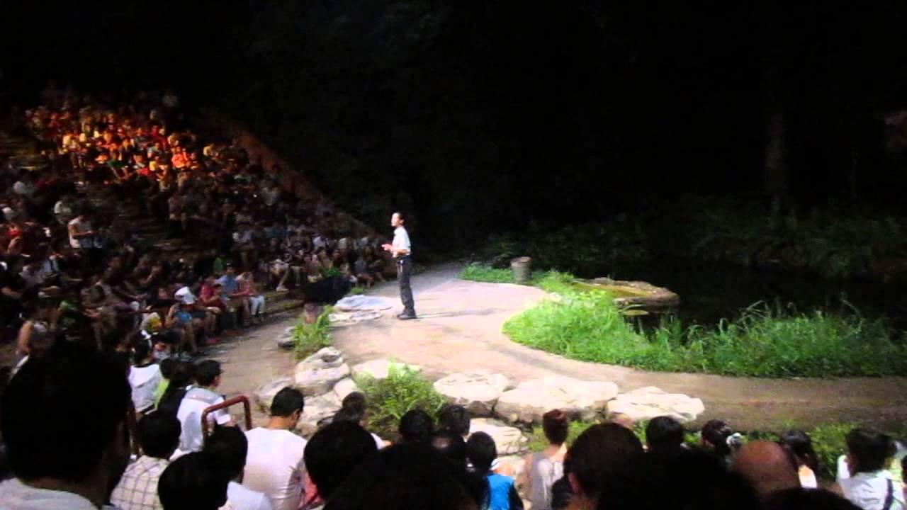 night safari show in singapore zoo youtube. Black Bedroom Furniture Sets. Home Design Ideas