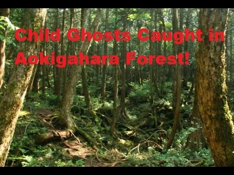 Child Ghost Caught In Aokigahara Forest