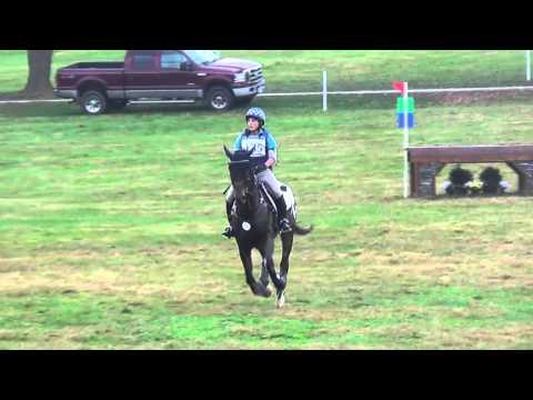 Andrea Johnson & Wapentake Midsouth Hagyard Three Day Event & Horse Trials October 2013