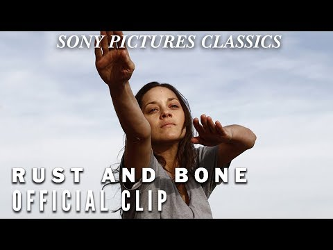 Rust And Bone Desire Official Clip Hd 2012 Youtube