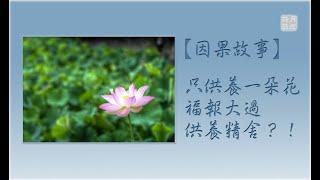 【因果故事】只供養一朵花,福報大過供養精舍?!.如俊法師導讀