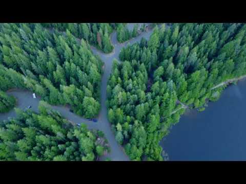 Wilderness - Mt Hood / Oregon 4K