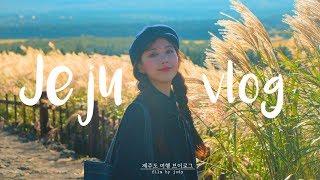 가을엔 제주도! 4박 5일 제주 여행 브이로그 🍂 Jeju Travel VLOG #10 | Jody 조디