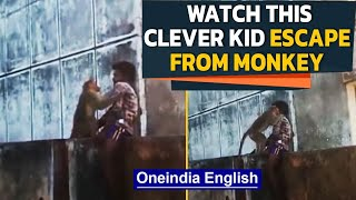 Biting Monkey tries to provoke, Kid acts like statue and escapes | Oneindia News