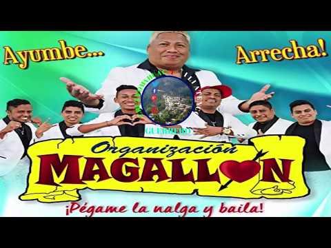 Organizacion Magallon  Mix - 2018