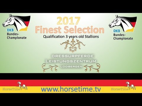 Finest Selection Bundeschampionate 2017 3 year old Stallions Qualification