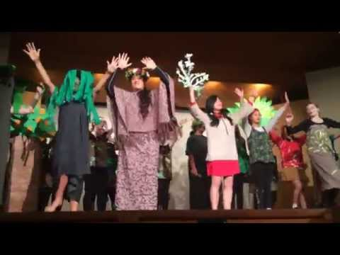 TREES The Musical