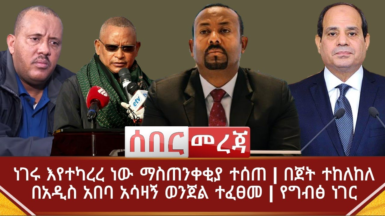 Ethiopian parliament votes to cut ties with Tigray region leaders