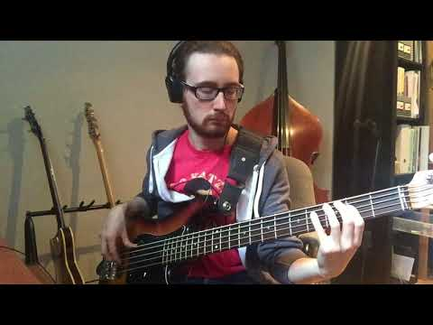 Ace Of Aces - Fearless Flyers (Vulfpeck) Bass Cover